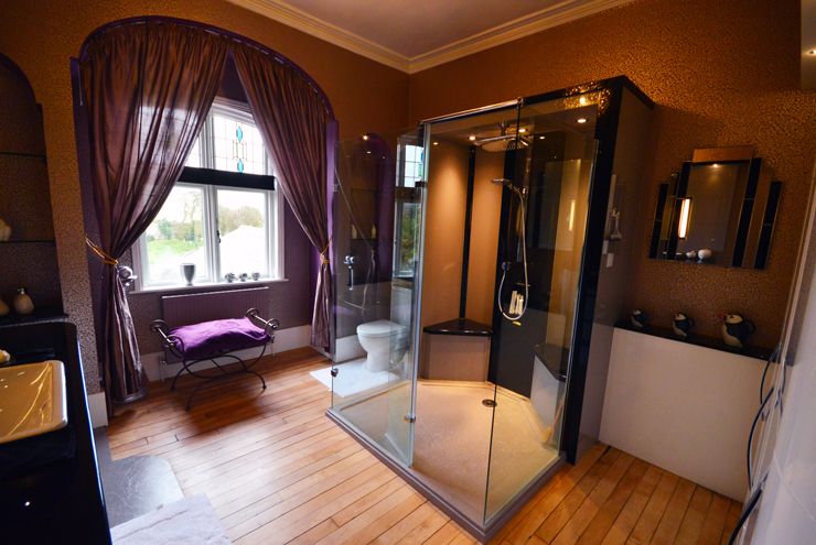 Disabled Bathroom with accessible shower enclosure