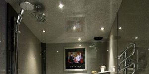 Wet room with built in tv screen and metallic bisque radiator